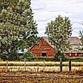The Beauty Of A Farm by Image Takers Photography LLC - Laura Morgan