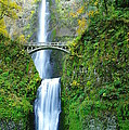 The Beauty Of Multnomah Falls by Jeff Swan