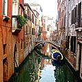 The Beauty Of Venice by Christy Gendalia