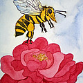 The Bee And The Rose by Shirin Shahram Badie