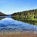 The Best Beach In Glacier National Park Panorama 2 by Scotts Scapes