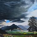 The Big Storm by Sue Birkenshaw