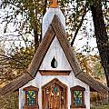 The Birdhouse Kingdom - Steller's Jay by Image Takers Photography LLC - Carol Haddon