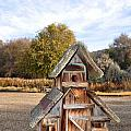 The Birdhouse Kingdom - The American Dipper by Image Takers Photography LLC - Carol Haddon