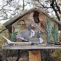 The Birdhouse Kingdom - The Geese A Swimming by Image Takers Photography LLC - Carol Haddon