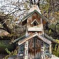 The Birdhouse Kingdom - The Red Crossbill by Image Takers Photography LLC - Carol Haddon