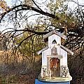 The Birdhouse Kingdom - Wilson's Warbler by Image Takers Photography LLC - Carol Haddon