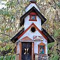 The Birdhouse Kingdom -the Pygmy Nuthatch by Image Takers Photography LLC - Carol Haddon
