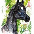 The Black Horse 1 by Angel Ciesniarska
