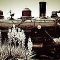 The Black Steam Engine by Bonnie Willis