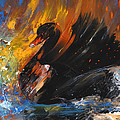 The Black Swan by Miki De Goodaboom