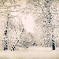 The Blizzard by Jessica Jenney