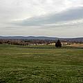 The Bloody Fields Of Antietam 1 by Howard Tenke
