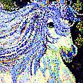 The Blue And White Pony by Saundra Myles