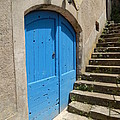 The Blue Door by Dany Lison