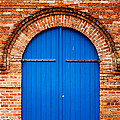 The Blue Door by Mary  Smyth