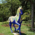 The Blue Horse by John Chatterley