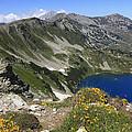 The Blue Vasilashko Lake Pirin National Park Bulgaria  by Ivan Pendjakov