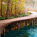 The Boardwalk by Boon Mee
