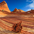 The Bone Yard In The North Coyote Buttes by Henk Meijer Photography