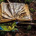 The Book by Louis Dallara