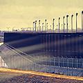 The Border by Dominic Piperata