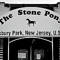 The Boss Stone Pony Asbury Park by Terry DeLuco