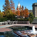 The Botanic Garden Fountain by Lois Ivancin Tavaf