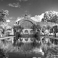 The Botanical Building In Black And White by Jane Linders
