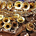 The Brass Section by Natalie Ortiz