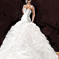 The Bride by Jean Pacheco Ravinski