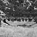 The Bridge 13 by Richard J Cassato
