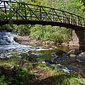 The Bridge by Alison Gimpel