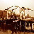 The Bridge by Menachem Ganon