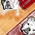 The Bulldogs by Lois Ivancin Tavaf