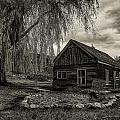 The Cabin by Christian Peay