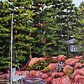 The Cabin by Linda  Steine