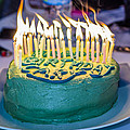 The Cake Is On Fire by Stephen Brown