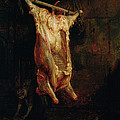 The Carcass Of An Ox, Late 1630s by Rembrandt Harmensz. van Rijn