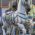 The Carousel Horse Smithville Nj by Terry DeLuco