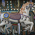 The Carousel Smithville New Jersey by Terry DeLuco