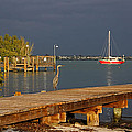 The Casual Observer by HH Photography of Florida