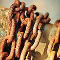 The Chain by Rebecca Sherman