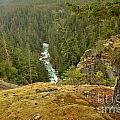 The Cheakamus River Gorge by Adam Jewell