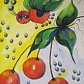 The Cherry Fairy by Shirley Watts