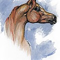 The Chestnut Arabian Horse 4 by Angel Ciesniarska