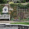 The Chicago Botanical Gardens-003 by David Allen Pierson