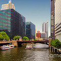 The Chicago River South Branch by Thomas Woolworth