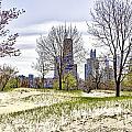 The Chicago Skyline Day-002 by David Allen Pierson