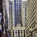 The Chicago Skyline Day-006 by David Allen Pierson